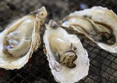 牡蠣盛り合わせ