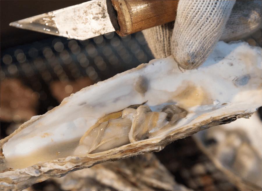 牡蠣の焼き方4