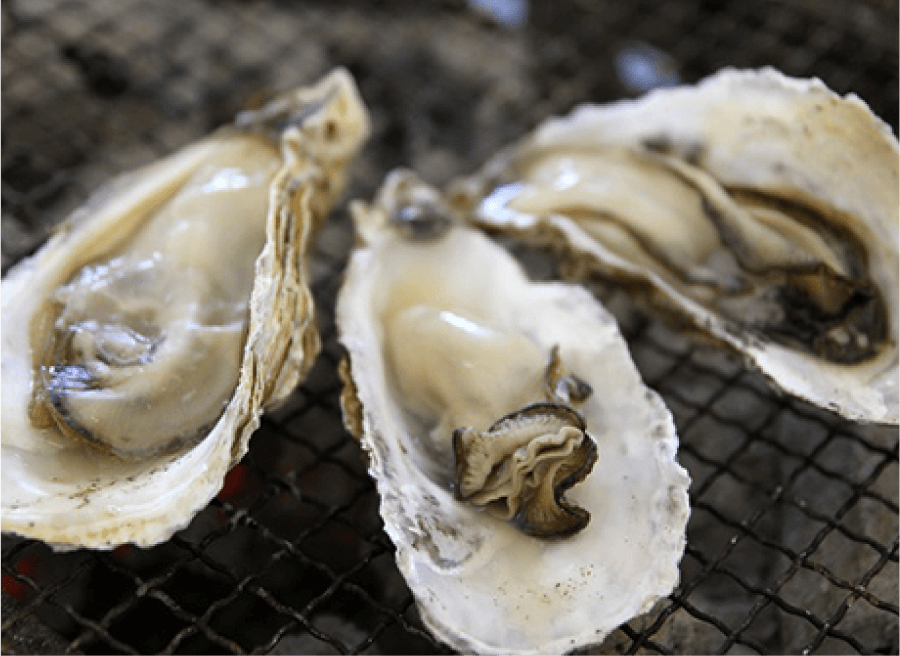 牡蠣の焼き方3
